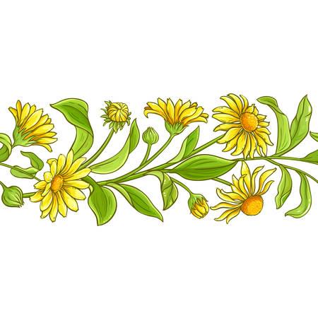 arnica vector pattern on white background Ilustracja