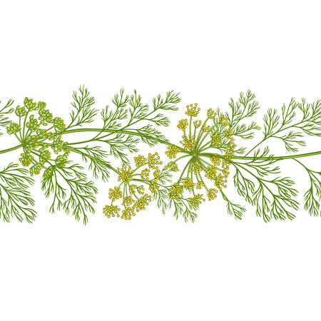 dill vector pattern on white background Ilustrace
