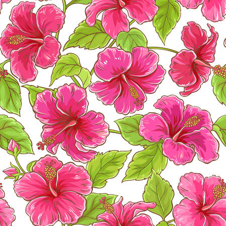 hibiscus flowers seamless pattern on white background