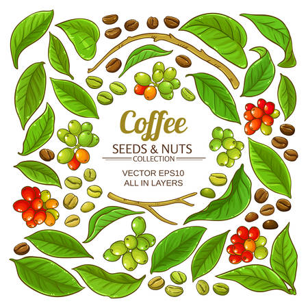 coffee elements vector set on white background Stock Vector - 124794806