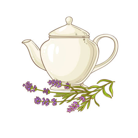 lavender tea in teapot illustration on white background