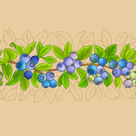 blueberry plant vector pattern on color background