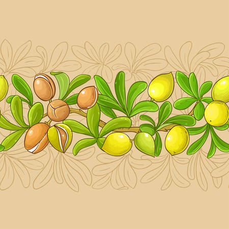 argan branches vector pattern on color background