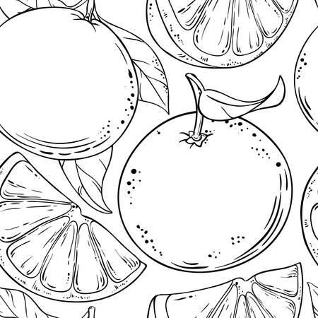 grapefruit fruits vector pattern on white background