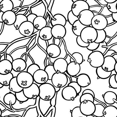 rowan berries vector pattern on white background