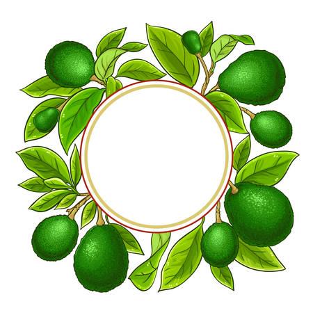 avocado branches vector frame on white background Illustration