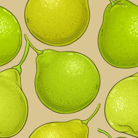 bergamot fruit vector pattern on color  background
