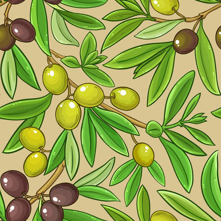 olive branches vector pattern on color background Ilustrace