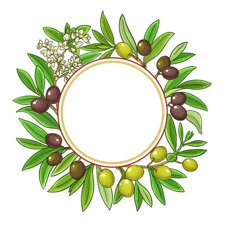 olive branches vector frame on white background