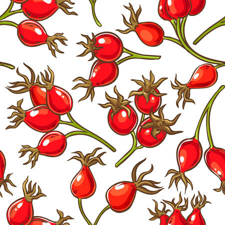 dog rose berries vector pattern on white background