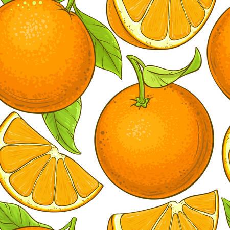 orange fruit vector pattern on white background