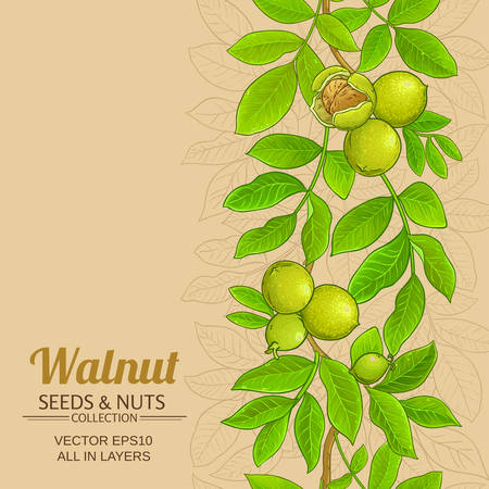 walnut branches vector pattern on color background Çizim