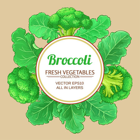 broccoli vector frame on color background