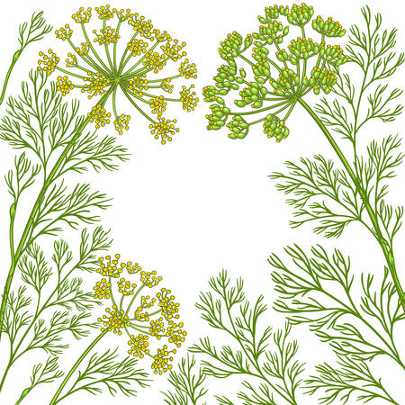 dill vector frame on white background