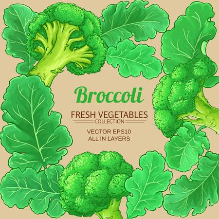 broccoli vector frame on color background