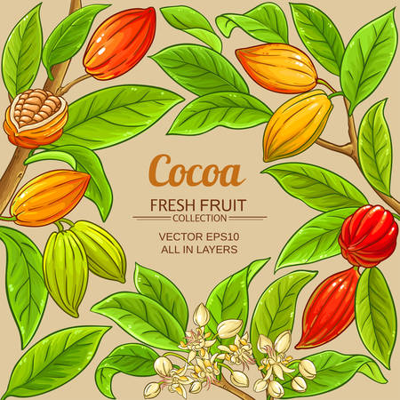cocoa vector frame on color background