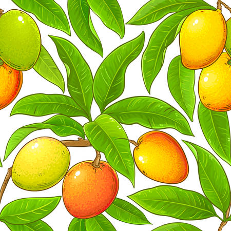 mango vector pattern 矢量图像