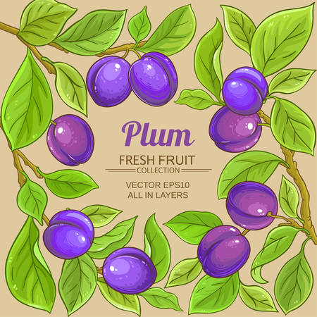 plum vector frame on color background