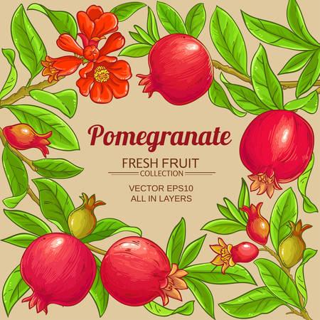 pomegranate vector frame on color background Ilustrace