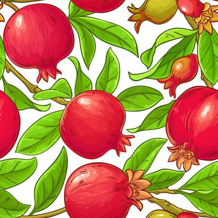 pomegranate vector pattern on white background Ilustrace