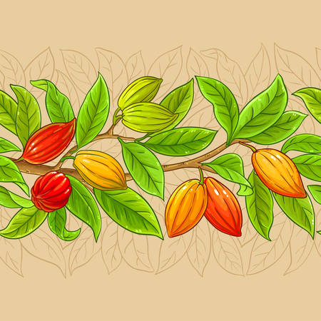 cocoa vector pattern on color background Ilustrace