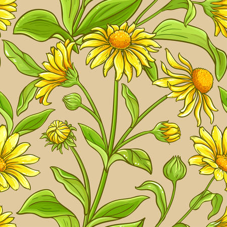 arnica vector pattern on color background Ilustrace