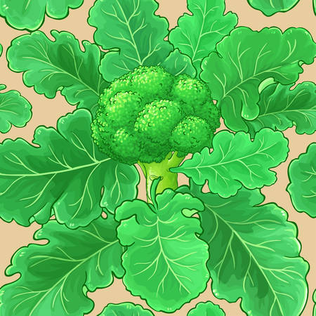 broccoli vector pattern on color background Stock Illustratie