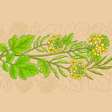 mustard vector pattern on color background