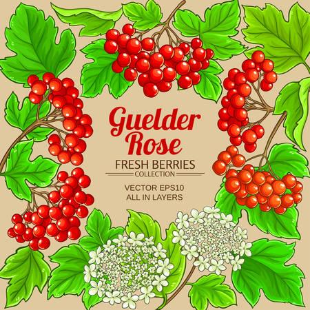 guelder rose vector frame on color background Ilustrace