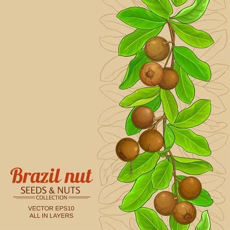 brazil nut branches pattern on color background Ilustrace