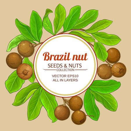 brazil nut branches frame on color background Illustration