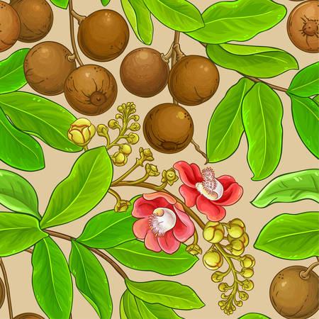 brazil nut pattern on color background Ilustrace