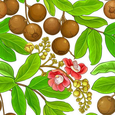 brazil nut pattern