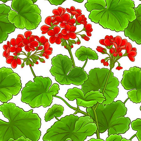 geranium vector pattern on white background