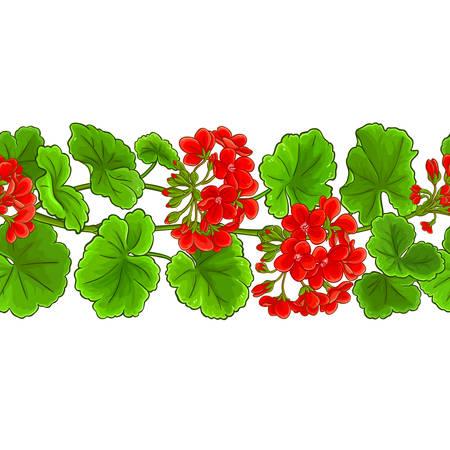 geranium vector pattern on white background