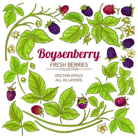boysenberry elements set  イラスト・ベクター素材