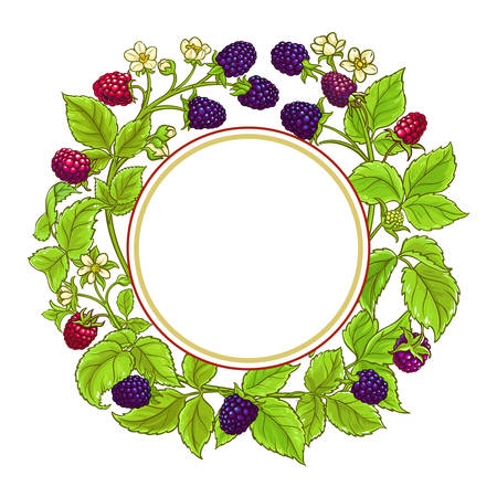 boysenberry vector frame