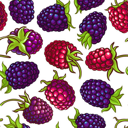 boysenberry vector pattern illustration