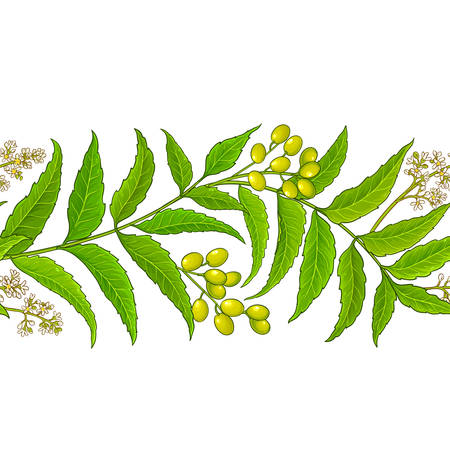 neem vector pattern