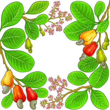 cashew vector frame