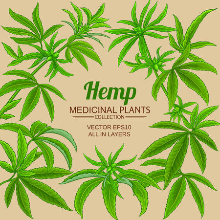 hemp vector frame on color background