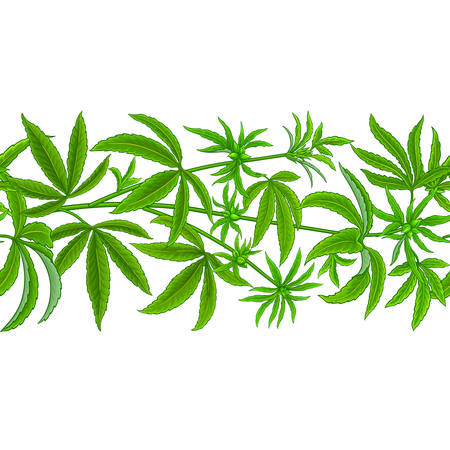 hemp vector pattern