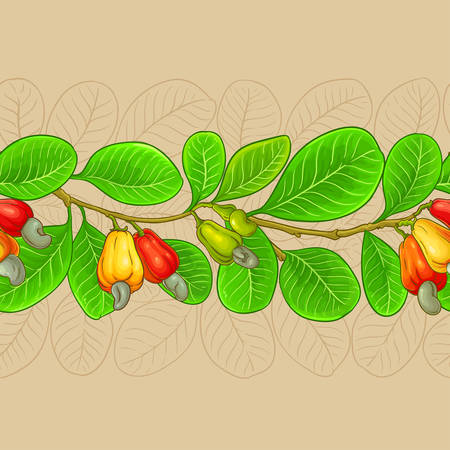 cashew vector pattern on color background
