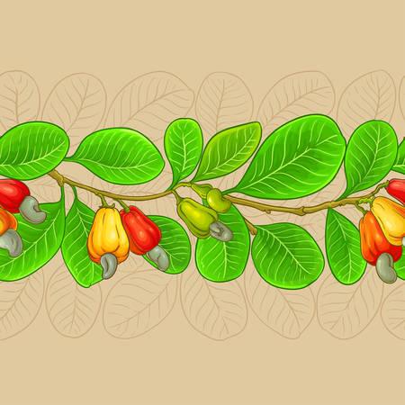 modèle vectoriel de noix de cajou sur fond de couleur