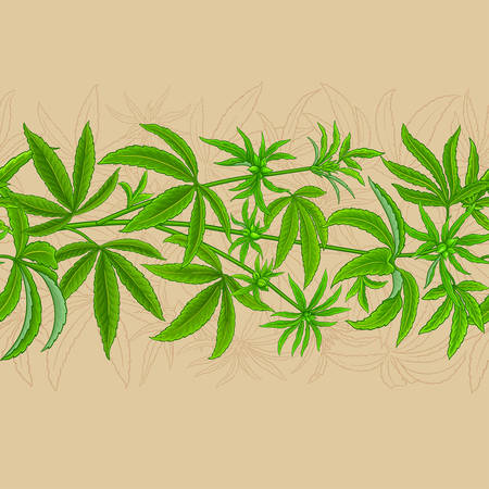 hemp vector pattern on color background Ilustrace