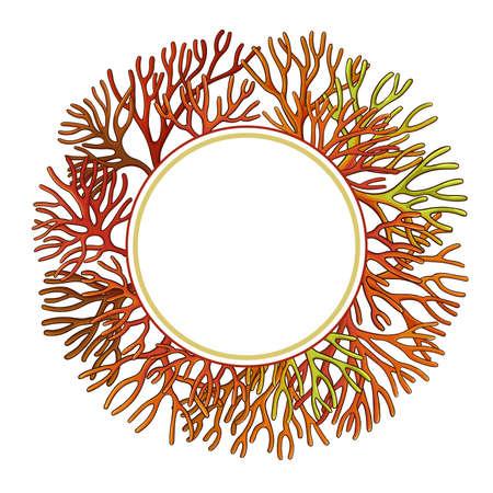 sea moss frame