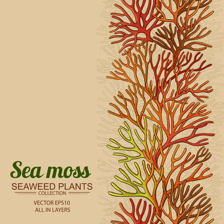 sea moss horizontal pattern Vektorgrafik