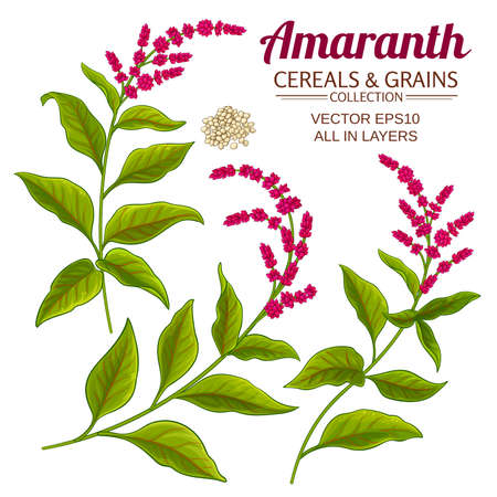 amaranth vector set