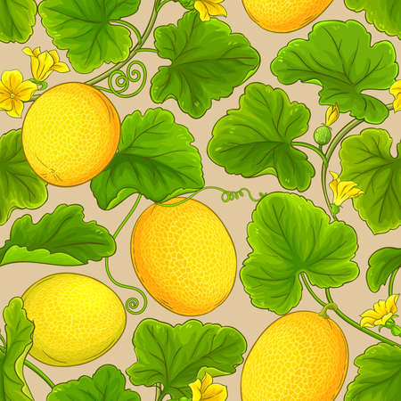melon vector pattern Ilustrace
