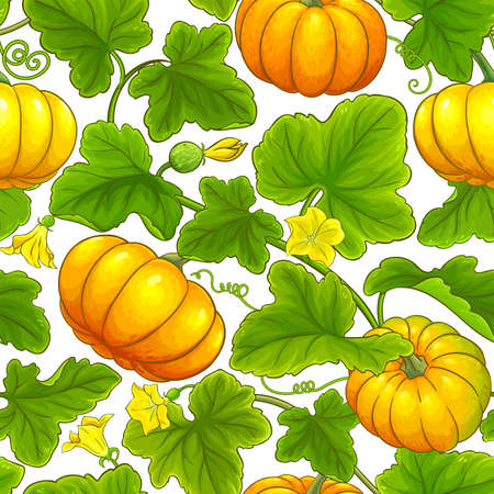 pumpkin vector pattern
